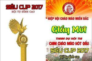 Hà Nội: Chuẩn bị tổ chức Siêu Cup Chào mào 2017 tại huyện Đông Anh