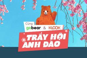 Cơ hội du lịch với cuộc thi 'Cùng GoBear, KLook trẩy hội anh đào'