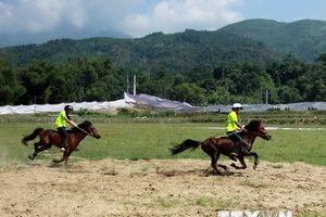 Hàng nghìn người đến cổ vũ Giải đua ngựa, đấu ngựa truyền thống