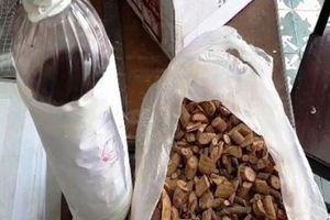 Vụ ngộ độc rượu tại Nghệ An khiến 3 người chết: Rượu được ngâm từ cây lá ngón
