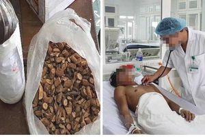 Vụ ngộ độc thực phẩm khiến 3 người tử vong: Các nạn nhân uống rượu ngâm cây lá ngón