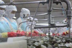 Vì sao Mỹ áp thuế bán chống phá giá kỷ lục với thủy, hải sản VN?