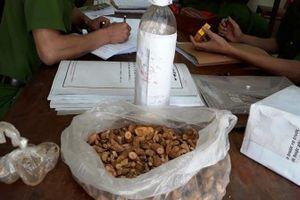 Vụ ngộ độc rượu ở Nghệ An: Nguyên nhân do rượu ngâm từ cây lá ngón