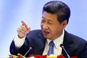 Ông Tập Cận Bình muốn Trung Quốc 'chiến đấu lấy lại vị trí xứng đáng'