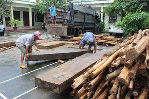 Nóng chuyện phá rừng, vận chuyển gỗ lậu