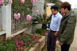 Tin mới vụ mất trộm cây hồng cổ ở Sơn La: Ô tô đỏ chở 1 cây khác