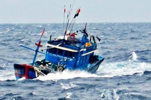 Hai ngư dân Bình Định mất tích khi đi biển