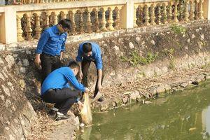 Hưởng ứng Tháng Thanh niên: Ra quân làm sạch hồ Phú Diễn