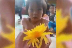 Bé gái kiên định nhất Việt Nam khi khẳng định hoa cúc... màu đỏ