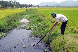 Việt Nam là quốc gia chịu ảnh hưởng nặng nề ô nhiễm trong nông nghiệp