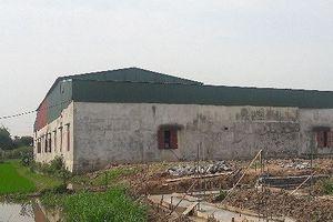 Hải Phòng: Ẩn họa từ nhà xưởng sản xuất mũ giầy 'chui' tại huyện Vĩnh Bảo