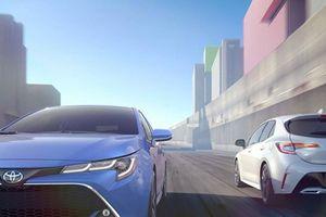 Toyota Corolla Hatchback 2019 'đe dọa' Honda Civic, Mazda3
