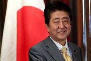 Cáo buộc về vợ không gây khó cho Thủ tướng Nhật Bản Shinzo Abe