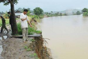 Đắk Lắk: Sạt lở bờ sông người dân mất đất