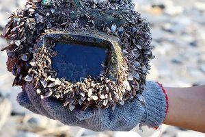 Máy ảnh rớt xuống biển hơn 2 năm vẫn hoạt động