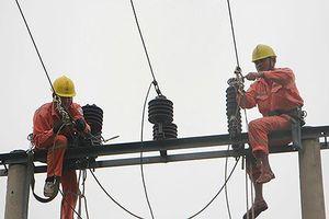 Tổng Công ty Điện lực miền Bắc diễn tập với sự cố bão giật cấp 12 đổ bộ vào Nghệ An