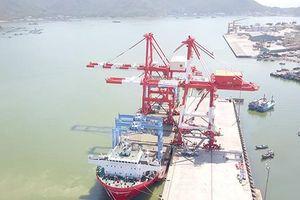 Cảng Quy Nhơn sau cổ phần hóa: Lãi tăng, thu nhập tốt