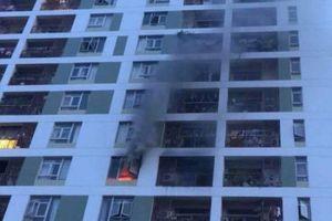 Vụ cháy chung cư Parc Spring ở Sài Gòn là do nướng mực?