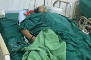 Vụ 4 người ngộ độc vì ăn nấm ở Hà Giang: Thêm một người tử vong