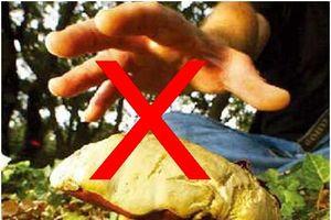 Ngộ độc nấm Hà Giang: Ba người tử vong, một người nguy kịch