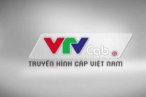 Vụ VTVCab đột ngột cắt kênh: Khách hàng có thể khởi kiện