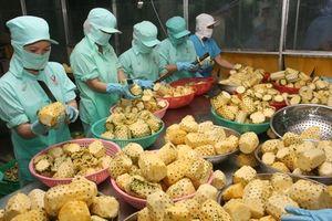 Xuất khẩu nông sản: Thuận - khó đan xen