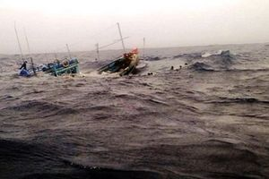 2 tàu cá chìm ngoài khơi nghi bị tàu sắt đâm