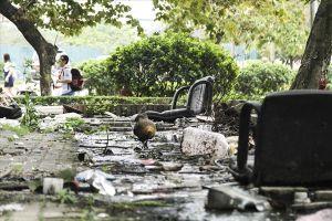 Hà Nội: Người dân khu chung cư N6 Đồng Tàu sống chung với mùi xú uế nồng nặc