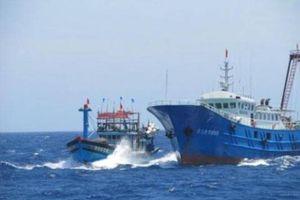 Nghệ An: Nhiều thuyền viên bị thương vì 2 tàu cá bị 'tàu lạ' đâm