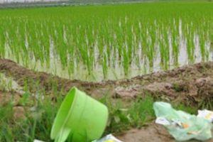 'Tuyên chiến' với vỏ chai, bao bì thuốc bảo vệ thực vật