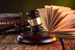 Hủy bản án sơ thẩm do xử... nhầm (!)