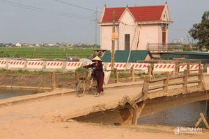 Dự án JICA2 đầu tư 30 tỷ xây dựng mới 3 cây cầu ở Yên Thành