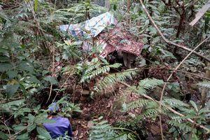 Khám nghiệm, điều tra vụ phát hiện thi thể phân hủy giữa rừng