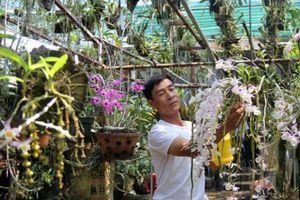 Ngất ngây với vườn lan rừng 3 tỷ đồng ở Lâm Đồng