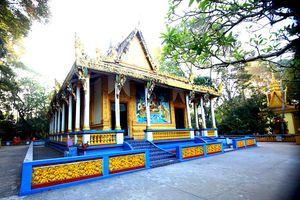 Kỳ bí ngôi chùa xây mộ cho lợn, dơi đậu trĩu cành cây