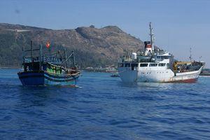 Tàu HQ 365 đưa 12 ngư dân bị nạn trên biển vào bờ an toàn