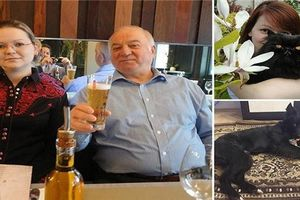 Hỏa thiêu 3 thú cưng nhà cựu điệp viên khiến Nga nghi ngờ