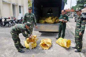 Quảng Ninh: Bắt giữ 300 kg chân gà đang trong quá trình phân hủy