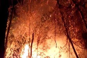 Cháy lớn ở Khu bảo tồn thiên nhiên Tà Cú