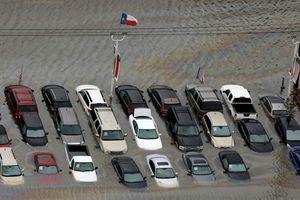 Lo ngại nhập xe cũ ngập bão Mỹ: Người bán trấn an