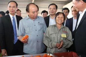 Thủ tướng thăm gia đình chính sách và nông dân giỏi Hải Dương