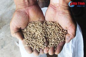 Giá thức ăn tăng cao, người chăn nuôi không mặn mà tái đàn