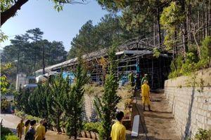 Đà Lạt: 'Bà hỏa' thiêu rụi 2.000m2 nhà xưởng khu nuôi trồng chế biến sâm Ngọc Linh