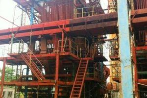 Vụ 28.000 tấn mía chờ 'giải cứu': Chủ tịch tỉnh Bình Định nói gì?