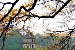 10 địa điểm du lịch hấp dẫn nhất Việt Nam mà bạn không thể không đến