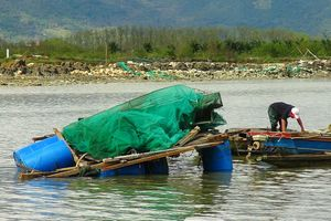Việc nhiều cán bộ xã Vạn Thạnh (Khánh Hòa) được hỗ trợ thiệt hại sau bão: Tạm dừng chi trả