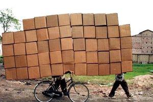 Oji sẽ chi hơn 600 tỷ đồng xây dựng nhà máy giấy ở Hà Nam