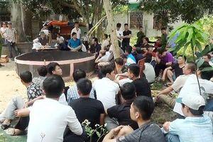 Nghệ An: Công an 'đột kích' sới gà khủng, 52 đối tượng bị bắt tại trận
