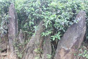 Nghĩa địa bí ẩn chôn những người bị hổ vồ bên sông Mã