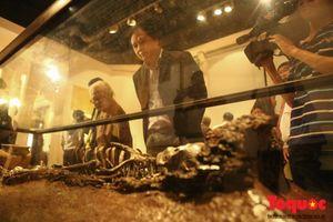 Khách du lịch quốc tế 'mắt tròn mắt dẹt' với 'Báu vật khảo cổ học' Việt Nam